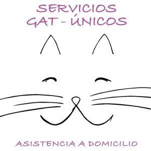 Servicios Gat-Únicos. Alba Dencausa Vendrell. Asistencia para gatos a domicilio. Canguro para gatos. Catsitter. Barcelona.