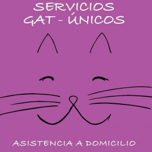 Logo Servicios Gat-Unicos- Servicios Gat-Únicos. Alba Dencausa Vendrell. Asistencia para gatos a domicilio. Canguro para gatos. Catsitter. Barcelona.